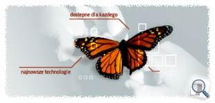 Telecopy Sp. z o.o. - projekt graficzny strony www